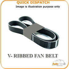 196PK0800 V-RIBBED FAN BELT FOR PEUGEOT 206 1.6 2004-