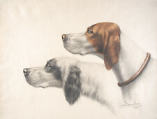Leon DANCHIN Signed DRAWING Watercolored English Setter Anglais Braque 1920