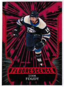 20/21 2020 UD SERIES 2 HOCKEY FLUORESCENCE RED CARDS F-XX U-Pick From List