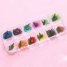 12 Colors  Nail Art Decoration Real Nail Dried Flowers Design DIY Tips Manicure