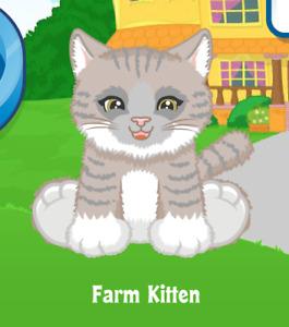 Webkinz Farm Kitten Virtual PET Adoption Code Only Messaged Webkinz Cutie Kitten