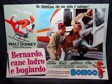 FOTOBUSTA CINEMA - BERNARDO CANE LADRO E BUGIARDO - WALT DISNEY-1972-COMMEDIA-06