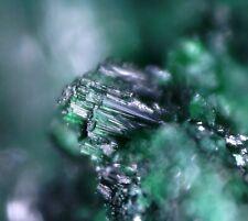 Malachite (primary) Tsumeb Namibia Micromount micro deep green on matrix