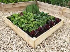Square Wooden RAISED BED for VEGETABLE GARDEN PLANTER Treated 2 FT 3FT 4FT 🌷🌷