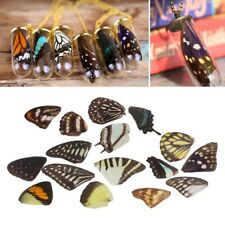 Real Butterfly Wings Resin Jewelry DIY Findings Necklaces Earrings Making 3PCS