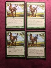 X4  Squirrel Nest JAP  Conspiracy     - MTG Magic   (see scan)