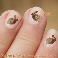 Rabbit, bunny, wild animal 24 Nail Art Stickers Decalsfrom Kerioak