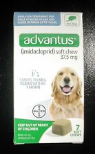 Bayer Advantus Oral Flea Treatment soft chew for dogs 23-110 lbs 7 count