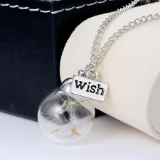 Clear New Real Dandelion Seeds Lucky Glass Wishing Bottle Chain Necklace Pendant