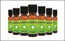 Essential Oils Set - 7 Varieties in 10ml Bottles- 100 Pure