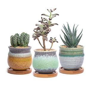T4U Ceramic Succulent Cactus Planter Plant Pot with Bamboo Tray Pack of 3 - Trio