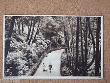 R&L Postcard: Boscombe Gardens, 1950s, Lansdowne