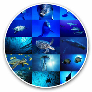 2 x Vinyl Stickers 15cm - Marine Life Collage Ocean Dive Diver Cool Gift #8936