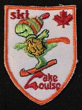 SKI LAKE LOUISE Skiing Patch Banff Alberta CANADA Resort Travel Turtle Souvenir