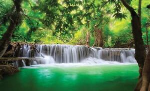 Fototapete Tapete Wandbild F00076 Magischer Wasserfall Natur Dschungel Pflanzen