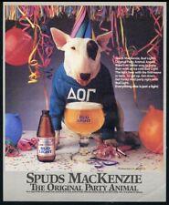1987 Spuds MacKenzie bull terrier frat boy photo Bud Light Beer vintage print ad