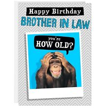 BROTHER IN LAW BIRTHDAY CARD Funny Humour Joke Monkey Good Grief Old REAL PHOTO