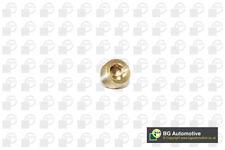 Sump Plug PK2202 BGA Oil Drain 60808630 7734022 7740368 031120 3112 Quality New