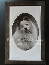 'Little Chips' Image of a sitting Dog, Old RPPC - Pub by The Rotary