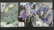 flower european year of nature conservation set of 3 maximum card Slovakia 86293