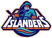 New York Islanders NHL Color Die Cut Vinyl Decal Sticker - You Choose Size