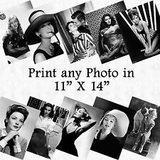 11x14 Lab Photo B&W or Color Mounted Gator Board PRINT of YOUR CHOICE Wall Art