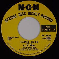 A.B. SKHY: Camel Back MGM '69 Funk Organ Mod Soul DJ PROMO 45 Superb NM- Hear