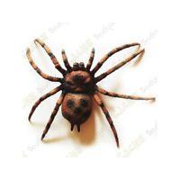 Spinne GROß Geocaching Versteck Geocache Spezial ausgefallen Wald Tier Tube