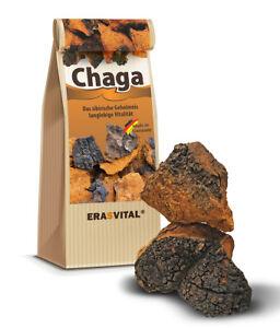 Chaga Pilz echte sibirische Birkenpilz Brocken, wild geerntet 50g