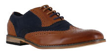 Classics Mens Tan/Navy Faux Suede Smart Formal Casual Lace Up Brogues Shoes