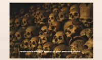 Creepy Vintage Pile of Skulls PHOTO Scary Weird Strange Spooky Human Skeleton