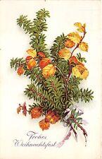 BG14875 fir branch christmas weihnachten  germany