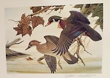 OHIO #1 1982 STATE DUCK STAMP PRINT WOOD DUCKS by John Ruthven w/Stamp