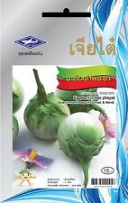Edible green Thai eggplant Vegetable Plant 240 seeds in pack raw eat