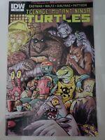 TEENAGE MUTANT NINJA TURTLES #53 (2015) IDW COMICS EASTMAN! 1ST PRINT NM