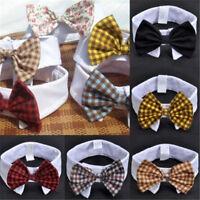 Fashion Lovely Dog Cat Pet Puppy Kitten Toy Bow Tie Necktie Collar Clothes Gift
