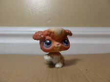 LITTLEST PET SHOP LPS #37 BROWN AND WHITE POODLE PUPPY DOG