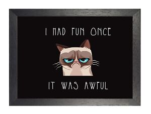 Funny Grumpy Cat  I Had Fun Once It Was Awful Animation Poster Print Picture