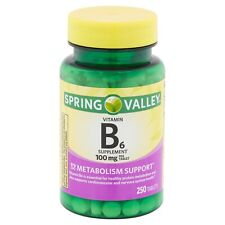 New Spring Valley Vitamin B6 Supplement Tablets 100 Mg 250 Ct.