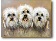 More details for dandie dinmont terrier by elise savage limited edition print