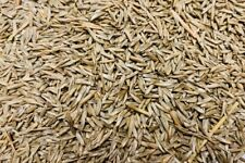 GRASS SEED 950g - LOVED BY MOST BIRDS - BRITISH, FOREIGN FINCHES & CANARIES