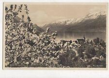 Frugtblomstring i Hardanger Norway Vintage RP Postcard 478a