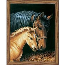 PAINTWORKS Paint by Number Kit GENTLE TOUCH Horses 11 x 14 inches Dimensions