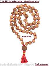 7 Mukhi Rudraksha Kantha / Laxmi Siddha Mala / Mahalaxmi Mala - Java - 55 Bead