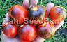 Dark Galaxy Tomato - 10 Seeds!