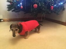 Christmas Miniature Dachshund Dog Jumper
