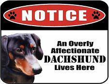 An Overly Affectionate Dachshund Lives Here 9 x 11.5 Laminated Dog Sign