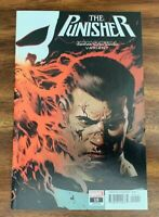 PUNISHER #15 IMMORTAL WRAPAROUND VARIANT COVER FIRST PRINT MARVEL COMICS (2019)