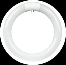 Feit Electric energy saving daylight 22 Watt Fluorescent Circular Light Bulb