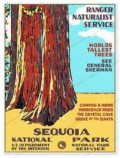 Sequoia National Park Service WPA California Ranger Art Print Poster 18
